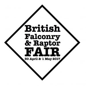 British Falconry Fair